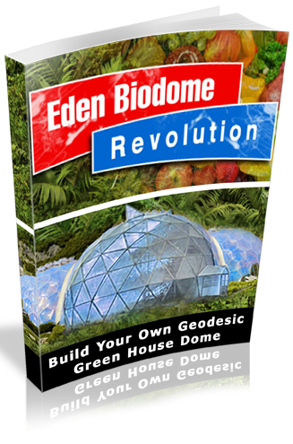 Geodesic Greenhouse eBook