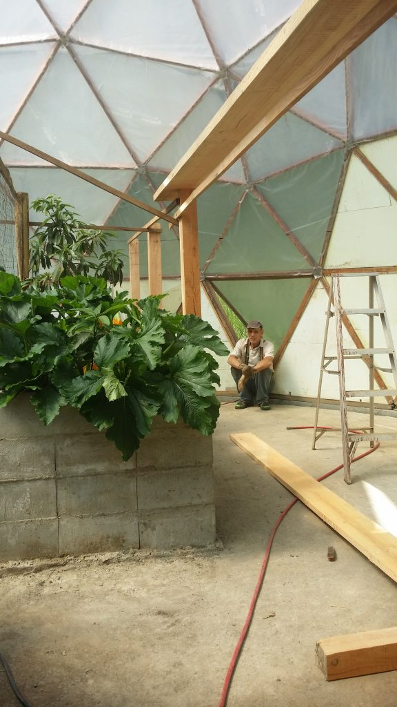 Biofurnace chicken coop