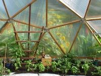 biodome greenhouse